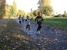 14.10.2012 - 20. Offenbacher Mainuferlauf