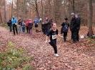 17.11.2012 - 36. Seligenstädter Winterlaufserie (1. Lauf)